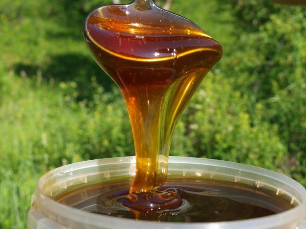 Горный мёд